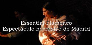 espetaculo d eflamenco essential flamenco centro de madrid