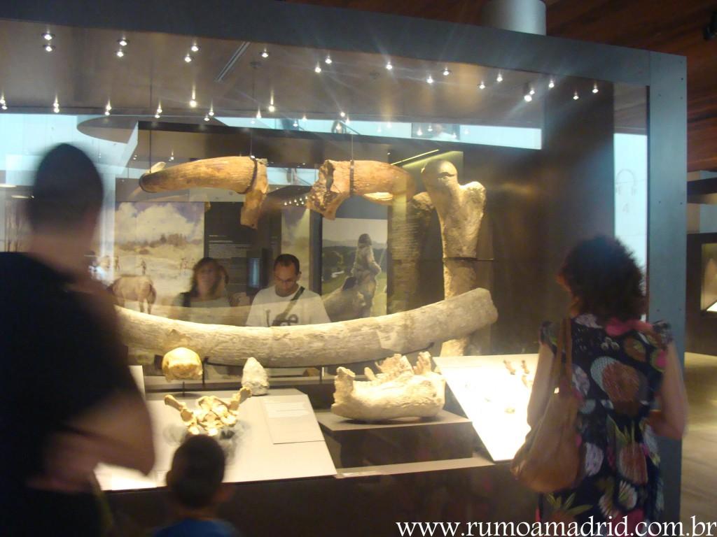 Museu Arqueológico Nacional lugares indispensaveis visitar madrid curiosidades madrid o que fazer em madrid