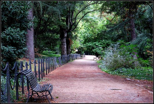 Campo del Moro, madrid, segredos