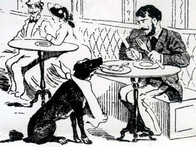 desenhos do perro paco