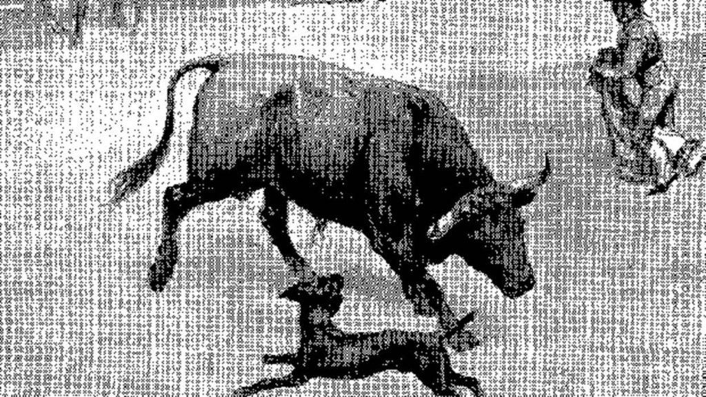 perro paco nas touradas